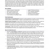 Professional CV format sample