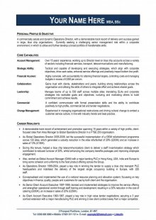 Free Professional CV Template Professional CV Experts